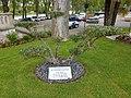 Aire sur l'Adour - commemorative tree - 11 Novembre 1918.jpg