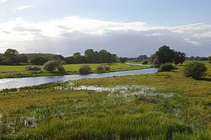 Altmark - Aland floodplain near Wanzer