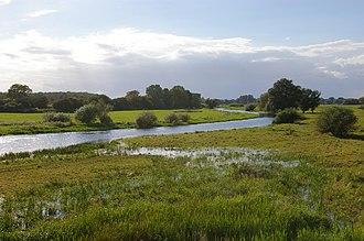 Altmark - Aland floodplain near Wanzer