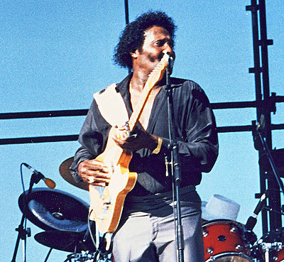 Picture of a band or musician: Albert Collins