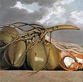 Albert Eckhout - Cocos.jpg