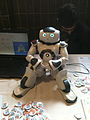 Aldebaran Robotics Stand at FOSDEM 2013.jpg
