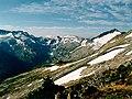 Alpine tundra.jpg