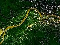 Le fleuve Amazone s'écoulant dans la forêt tropicale