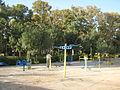 Amin al-Islami Park - Trees and Flowers - Nishapur 127.JPG