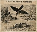 An eagle prepares to swoop on an animal which is entwined wi Wellcome V0007639EBR.jpg