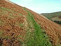 Ancient path on Uldale End - geograph.org.uk - 1603163.jpg