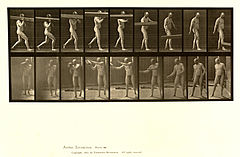 Animal locomotion. Plate 384 (Boston Public Library).jpg