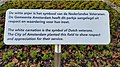 Anjerperk Vondelpark (2).jpg