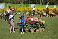 Annual Flower Show - Agri-Horticultural Society of India - Alipore - Kolkata 2013-02-10 4733.JPG