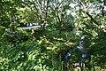 Aoba-yama park03s3872.jpg