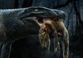 Aplestosuchus.tif