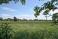 Arable farmland off Sutton's Lane - geograph.org.uk - 442572.jpg