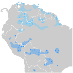 Arawak - Arawakan languages in Southamerica. The northern Arawakan languages are colored in light blue, while the southern Arawakan languages are colored in dark blue.