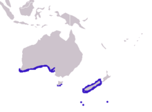 Arctocephalus forsteri distribution.png