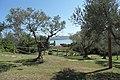 Area del Giardino delle Piante acquatiche Isola Polvese - panoramio (2).jpg