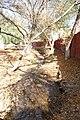 Arroyo, Fraccionamiento Urdiñola, Saltillo Coahuila - panoramio (24).jpg