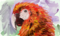 ArtRage Macaw.png