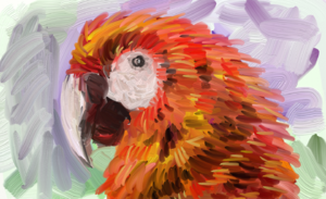 Painting of a Macaw using ArtRage