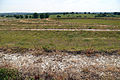 Art earthwork landscape sculpture Woodland Trust Theydon Bois Essex 04.JPG