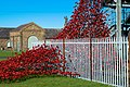 Ashington, UK - panoramio (4).jpg