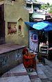 Assam Holy Man (15402626).jpg
