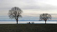 Contre jour où deux arbres en hiver se détachent devant un horizon fait d'une chaine de montagnes.