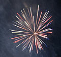 Australia Day Fireworks (5392985910).jpg
