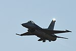 Australian International Airshow and Aerospace & Defence Exposition 2017 170303-F-ZB121-044.jpg