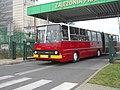 Autobus Ikarus w zajezdni Franowo Poznań 24 listopada 2019.jpg