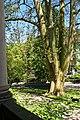 Baden Baden - Trinkhalle - View NW.jpg