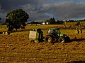 Baling up the Hay - geograph.org.uk - 512753.jpg