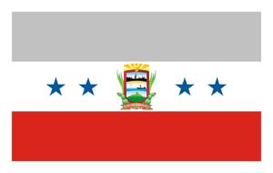 Punto Fijo - Image: Bandera Carirubana