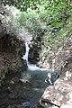 Banias river (8).jpg