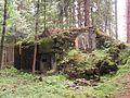 Bartošovice v Orlických horách, R-S 58 (rok 2010; 01).jpg