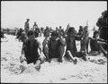 Battle of Tarawa, Prisoners. - NARA - 532519.tif
