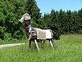 Baum - Pferd - panoramio.jpg