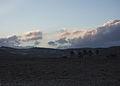 Bedouin desert sunset (425808299).jpg