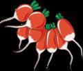 Beet root clip art.png