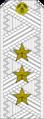 Belarus MIA—01 Colonel General rank insignia (White).png