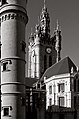 Belfort douai675.jpg
