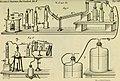 Berichte der Deutschen Botanische Gesellschaft (1884) (19743797534).jpg