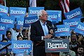 Bernie Sanders stares with campaign signs at UNC-Chapel Hill.jpg