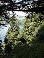 Besse-et-Saint-Anastaise Lac pavin (3).jpg