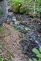 Bezimeni potok iznad Crnog vrha.jpg