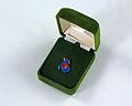 Bicentennial Lapel Pin.jpg