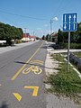 Bicycle lane, Rákóczi Street, 2017 Dabas.jpg