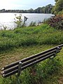 Birdhouse at Lake Hiawatha.jpg
