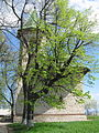 Biserica Adormirea Maicii Domnului din Deleni2.jpg