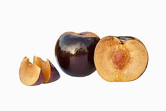 Plum - Black Amber plum